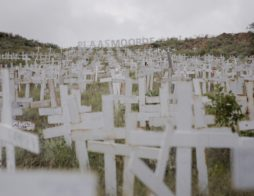 This is a memorial to the genocide of the white farmer in South Africa. Each cross represents much more than one life -- it is a family destroyed, a young son or daughter who no longer sleeps or eats, and a farm left to return to bushveld.